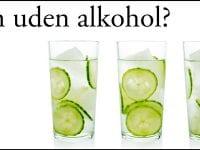 Prøv gin uden alkohol