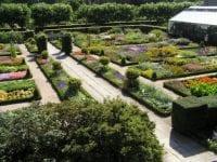 Plantesamling, foto: KU